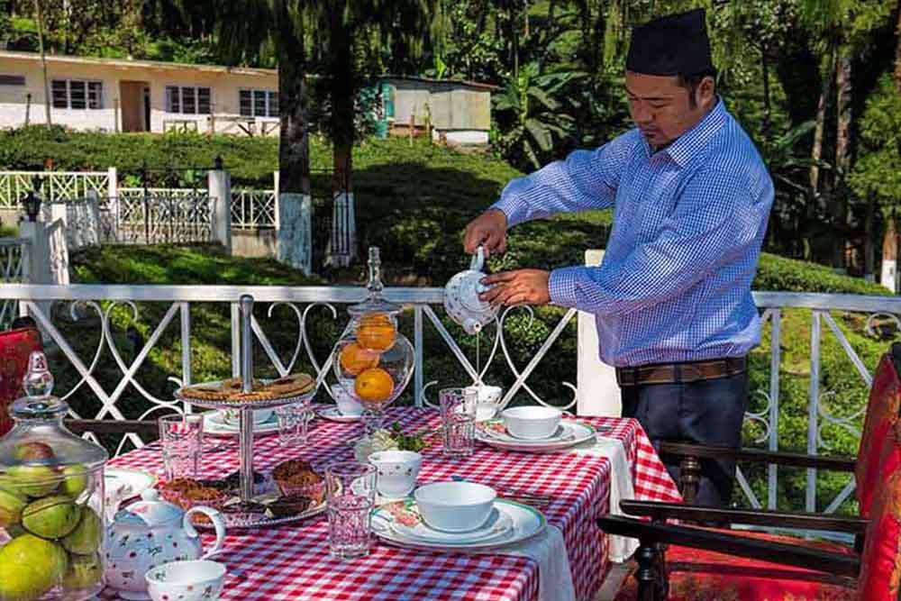 luxury tea resort in india,luxury tea hotels in darjeeling, tea estates in darjeeling, tea retreat in india