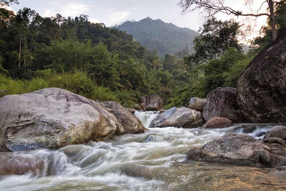 tea estate stay in india, best tea retreat in india, luxury tea hotels in darjeeling