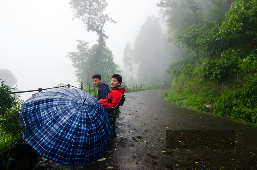 top tea retreat in darjeeling, tea estate vacation in india, tea estate accommodation india